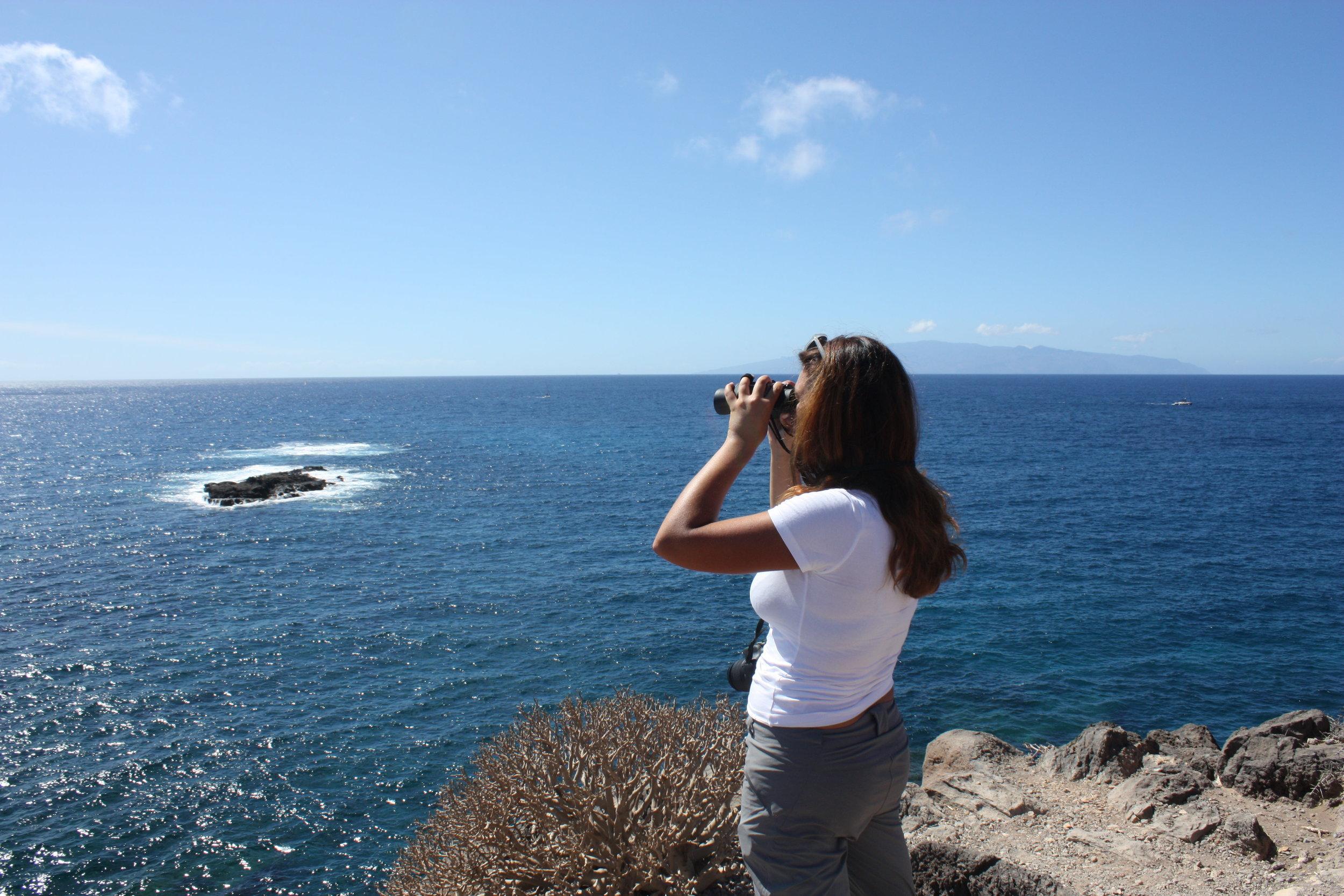 Kokemus oli mukava ja ainutlaatuinen! Suosittelen Teneriffan valaiden ja delfiinien suojeluprojektia vapaaehtoishalukkaille, jotka haluavat yhdistää rantaloman tärkeään eläinten ja ympäristön hyväksi tehtävään työhön. - Anita