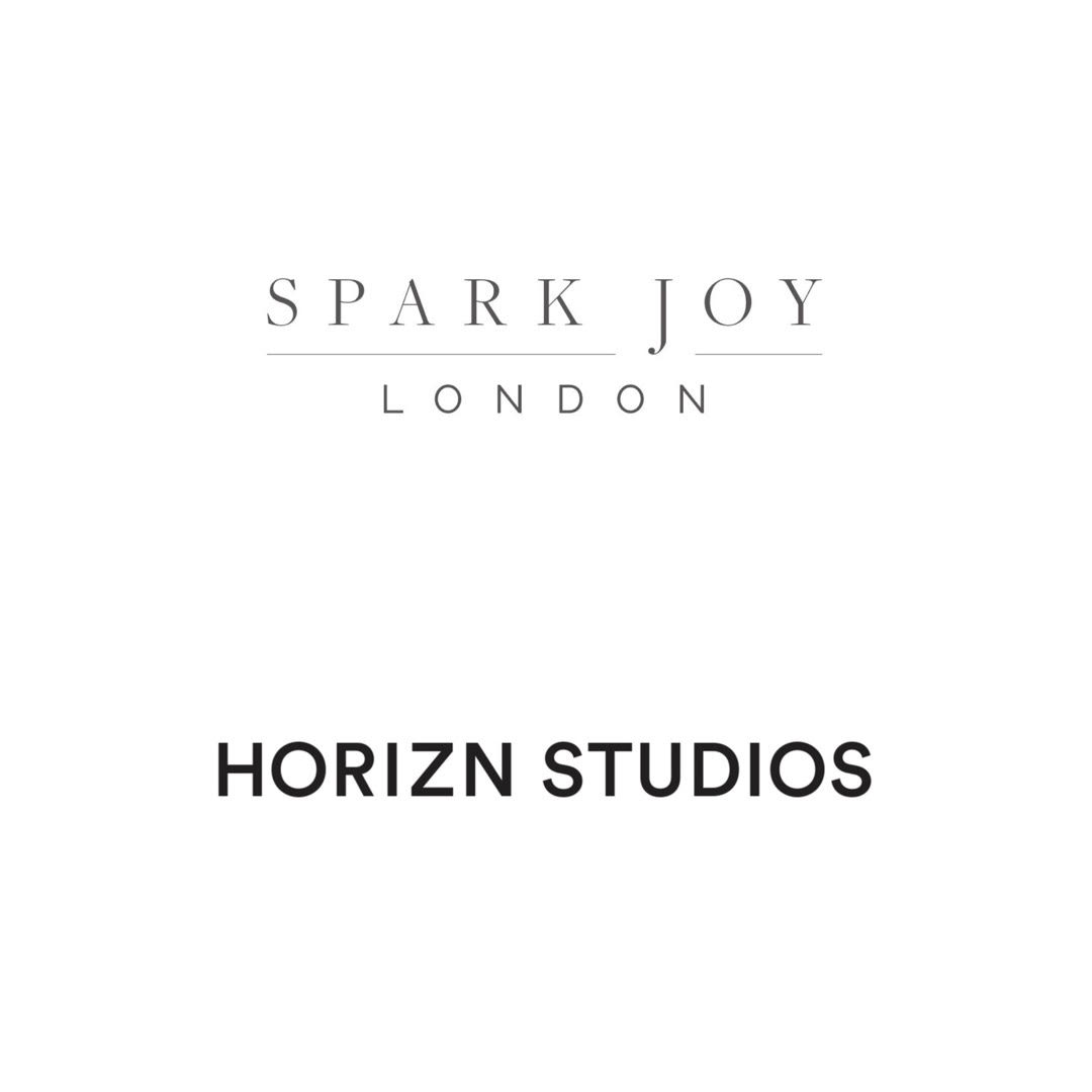 Collaboration with Horizn Studios