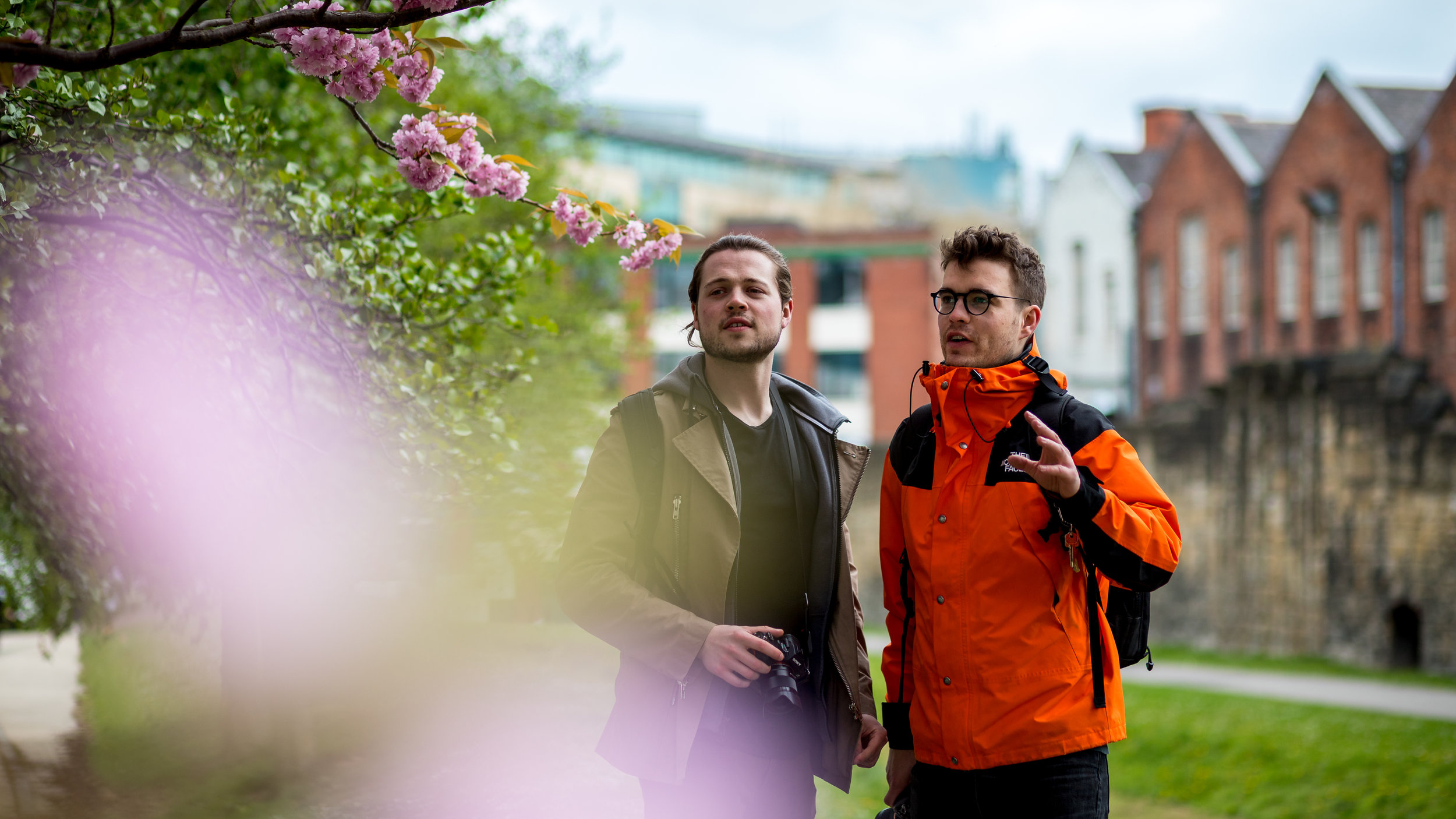 Harry and Dan discussing the finer aspects of pink tree blossom.