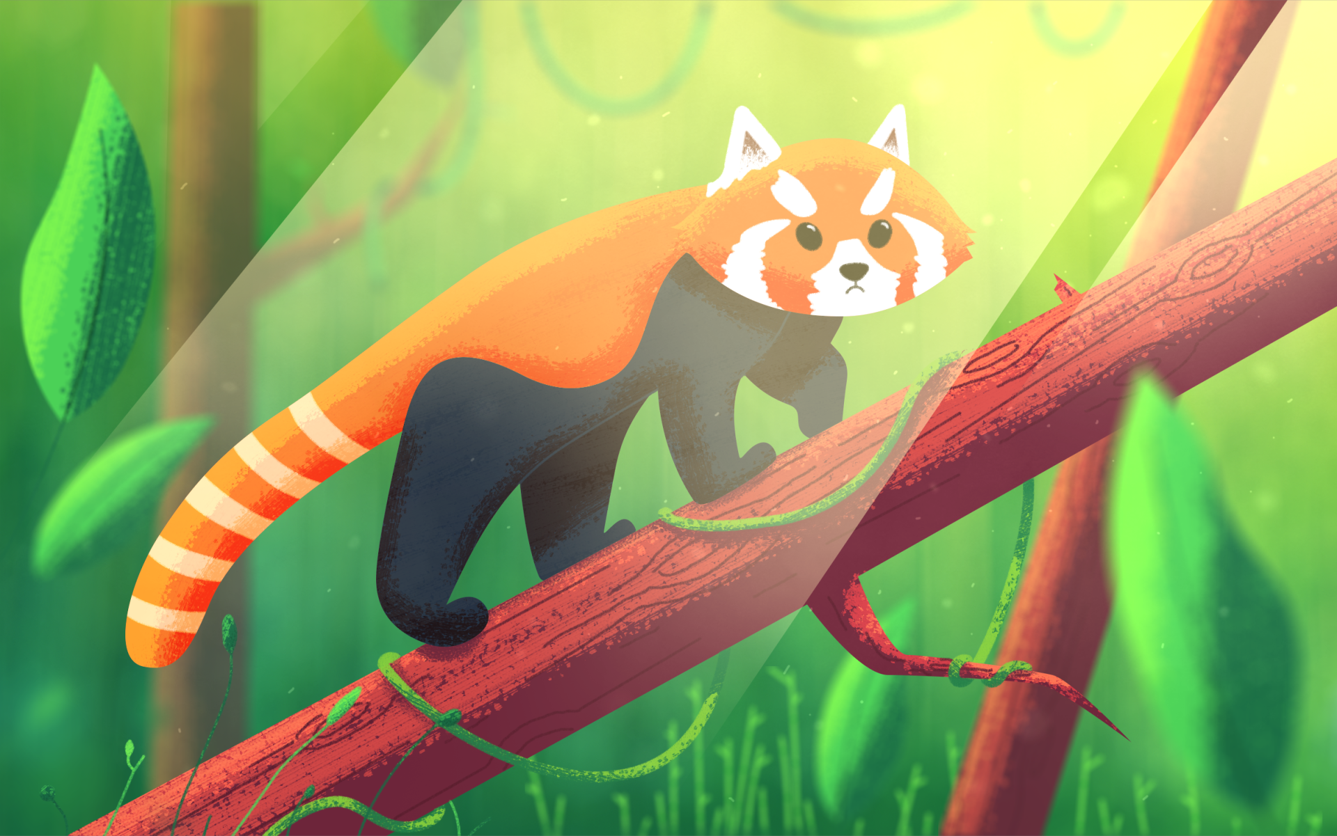 Red Panda - Final Image.png