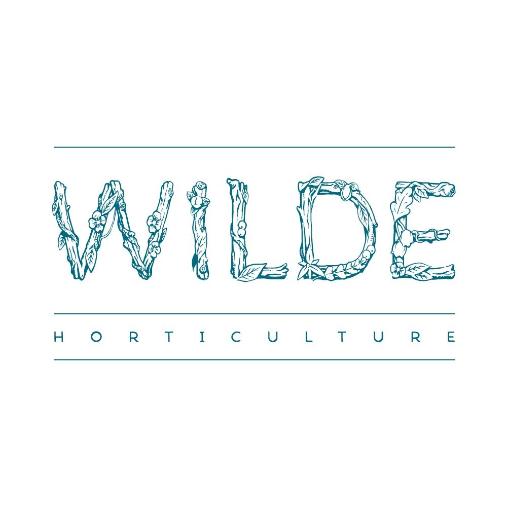 wilde-logo-wide-teal.jpg