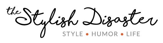 liz feezor stylish disaster blog logo