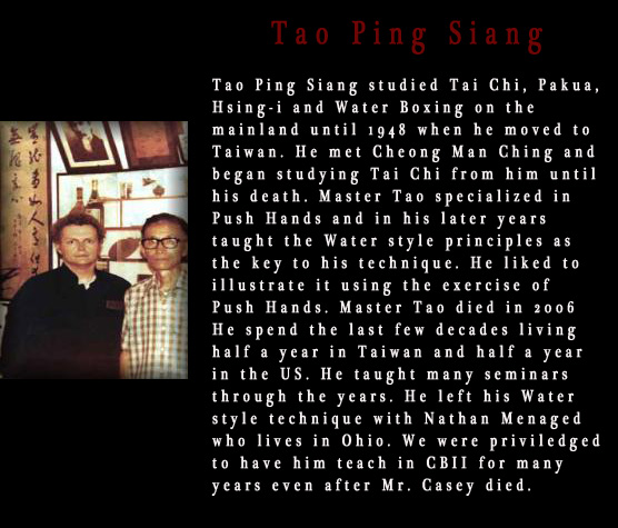 Christopher Casey and Tao Ping Siang