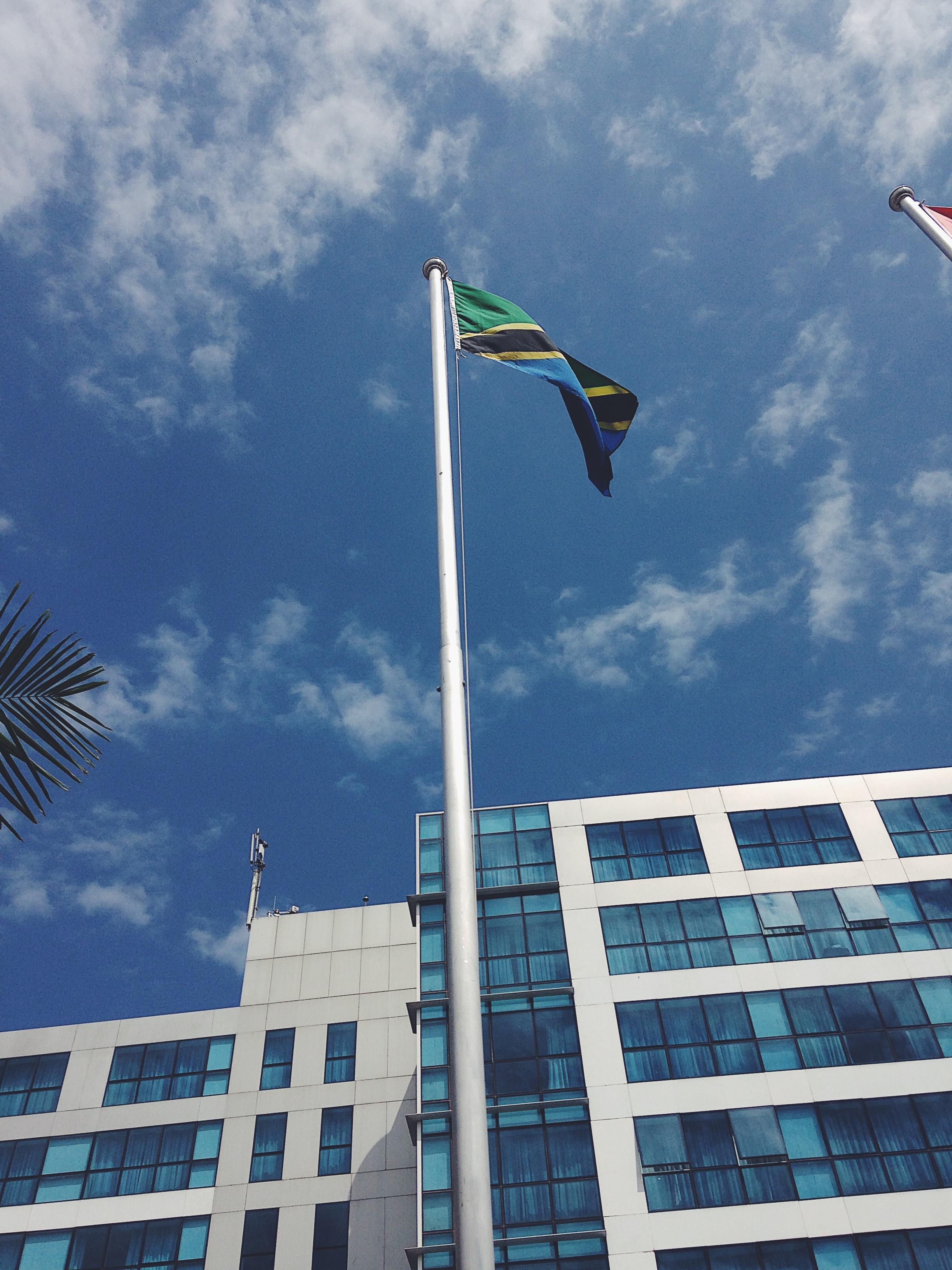 Tanzanian Flag.jpeg
