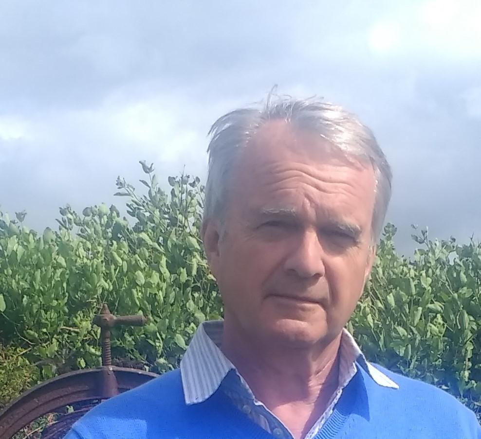 Ron Gunn    Board Member