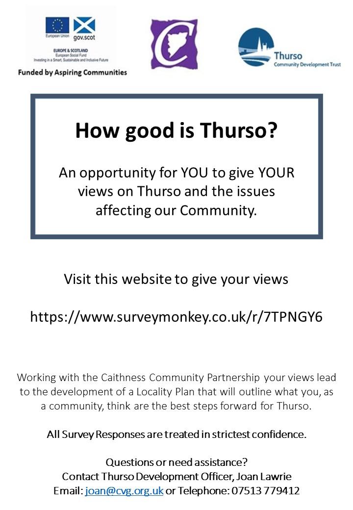 Survey Flyer.pptx.jpg