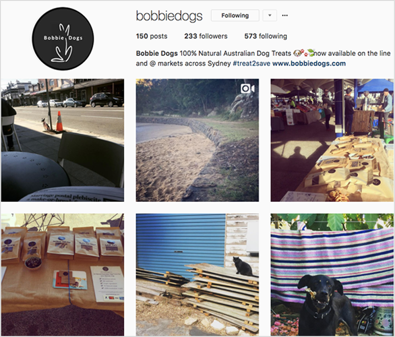 bobbiedogs-insta.png