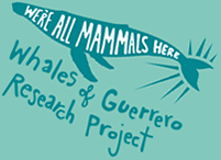 whales-guerrero logo.png