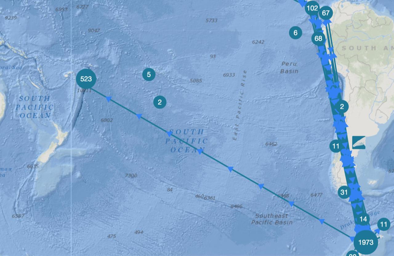 West Antarctic Peninsula Migratory Patterns