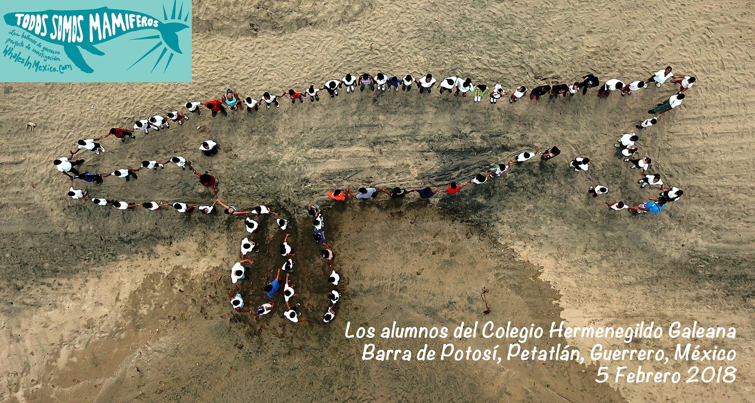Students form the shape of a humpback whale on a beach in Barra de Potosí