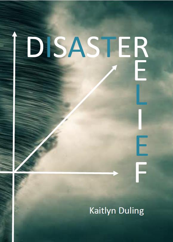 disasterrelief_1024x1024.png