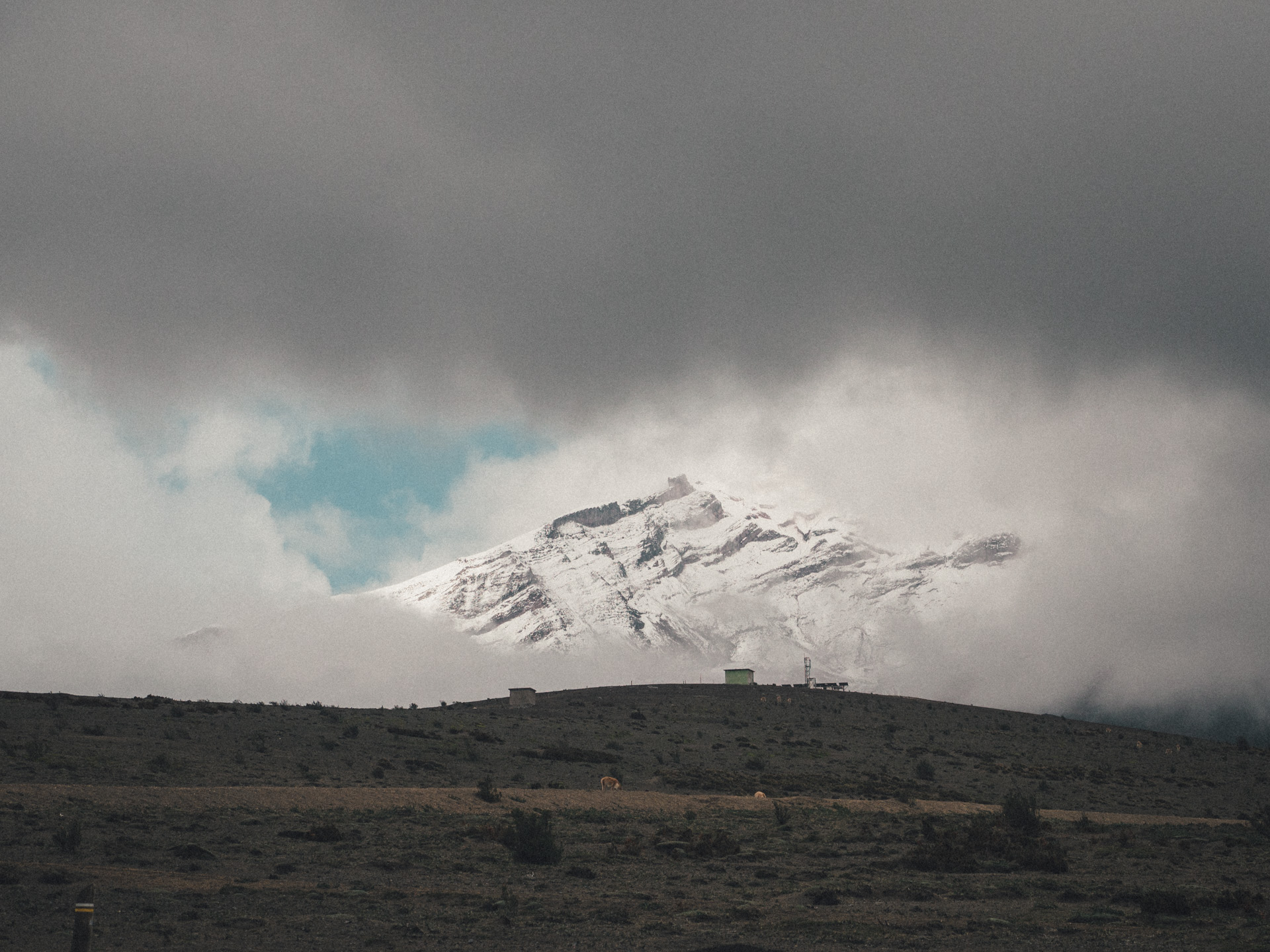 View on the summit of Chimborazo. Only for a few seconds the clouds broke away, the only moment I have seen the mountain.