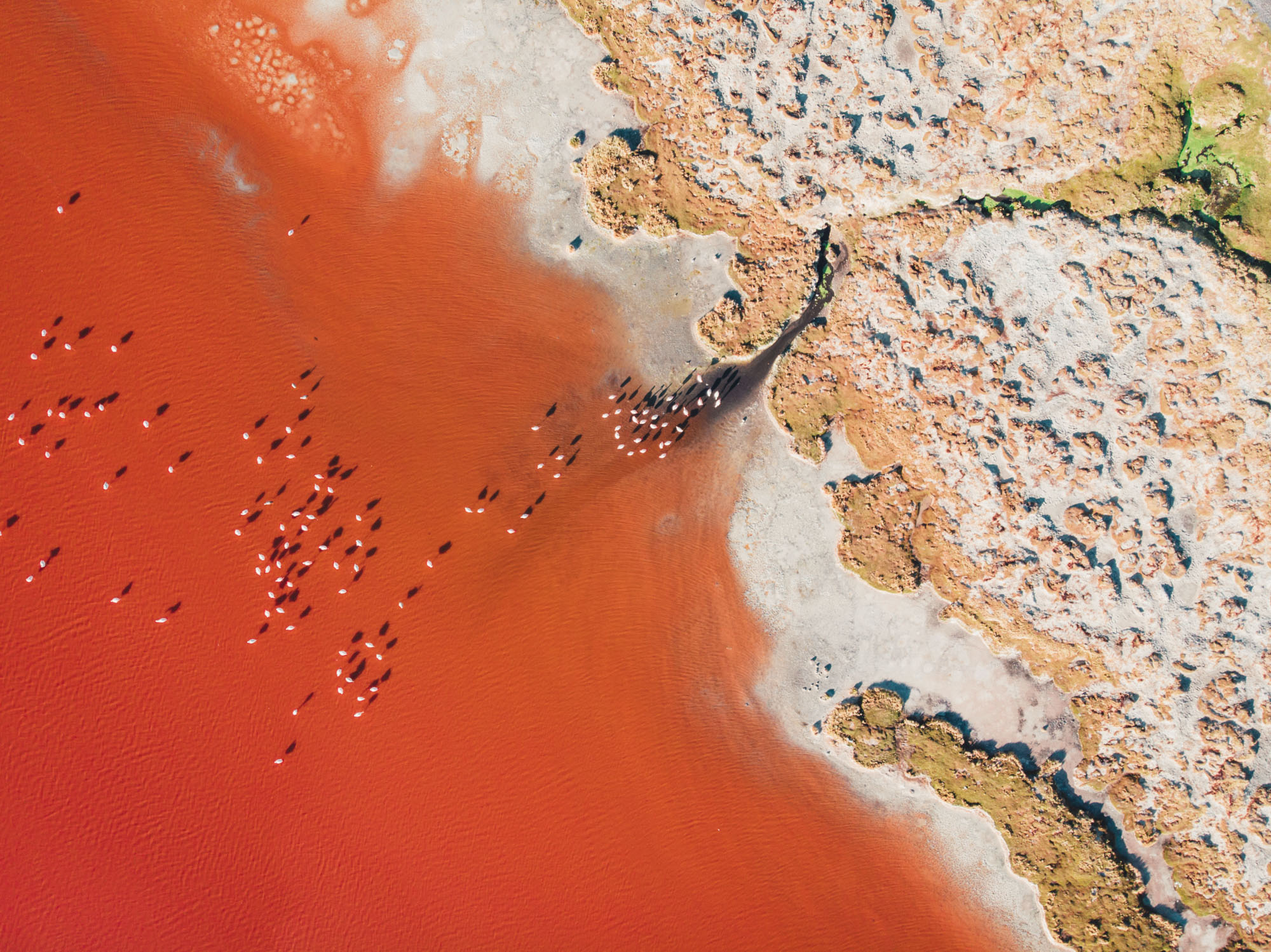The red colour is caused by red sediments and pigmentation of some algea.