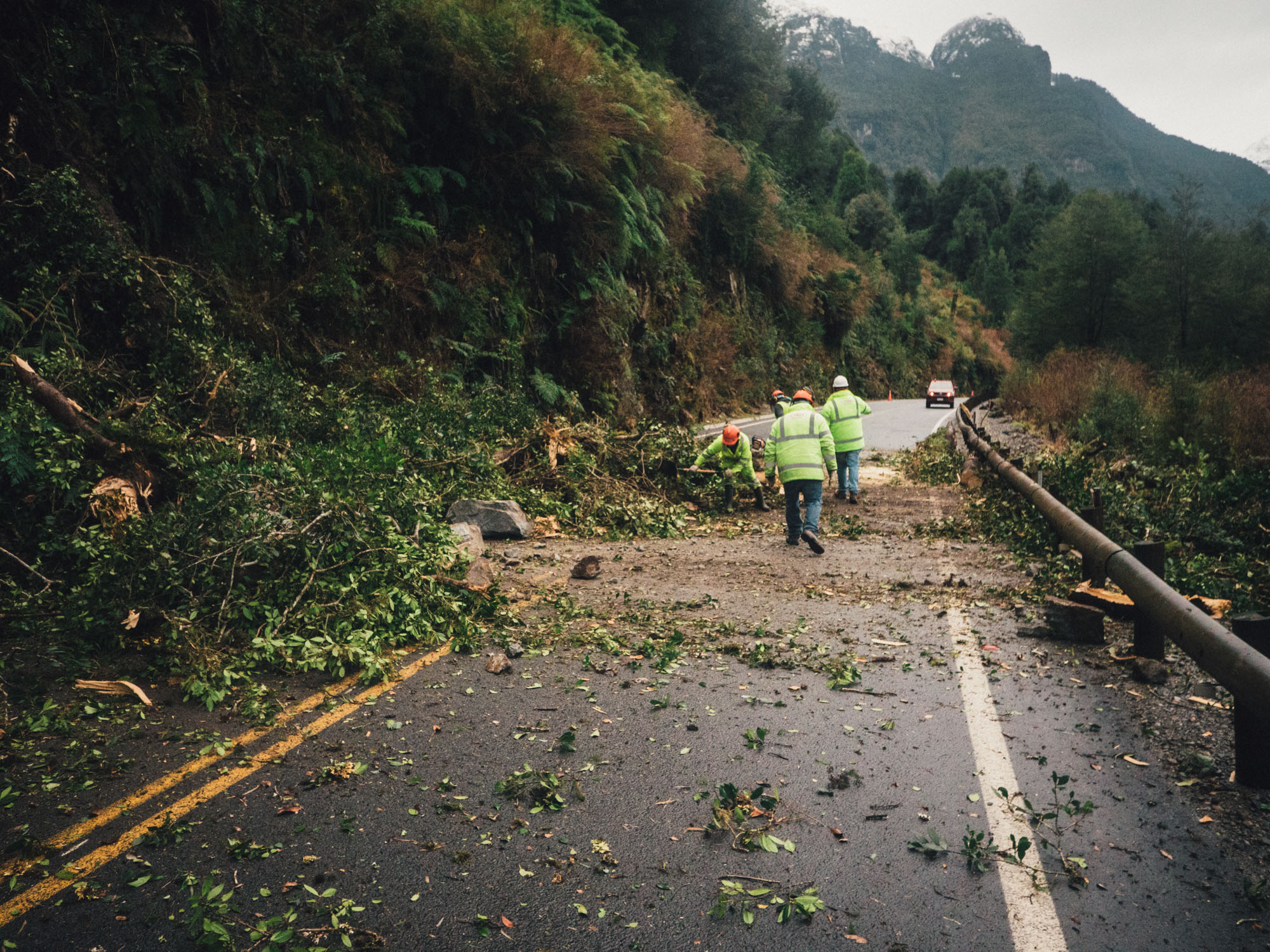 A dead tree had collapsed through the heavy rain fall and blocked the road.