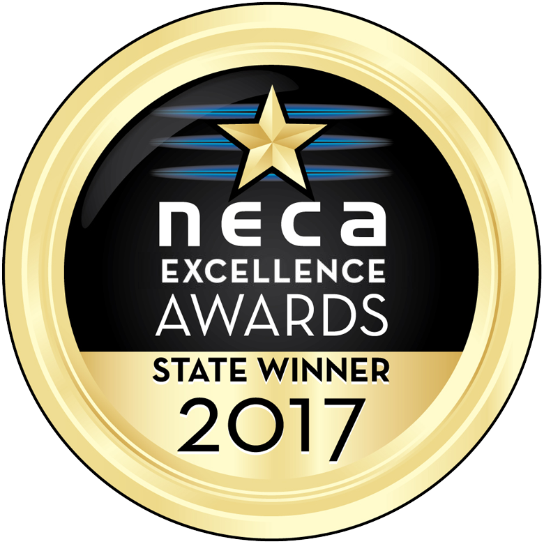 NECA Excellence Winner Medal 2017.png