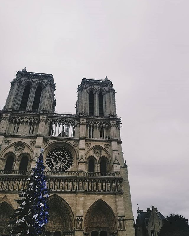 We are so thankful that we had the incredible opportunity to see the Notre Dame in Paris over Christmas. It is such an amazing and beautiful building and it is so sad to see it going up in flames 😢 . . . #notredame #notredameparis #paris #paristravel #france #france_holidays #parisfrance #globalwanderer #travelscape #passportpassion #travelcouplelife #travelcoupleblogger #travelcouplegoals #creativetravelcouples #traveltheworldwithme #newbloggers #microblogger #bloggergram #photographylovers💕💕 #photographygoals #travelphotographyoftheday #aroundtheworldpics #beautifuldestinations #travellinglife #happytraveller #discovernewplaces #wanderaround #minnesotablogger #mplsblogger