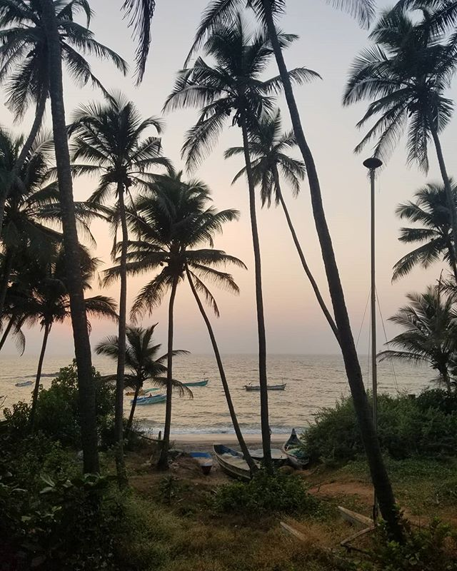 Missing the beaches of Goa ☀️ .  Ebenezer really surprised me with Goa, I was pretty doubtful and wanted to go to Morocco instead. But he planned everything for our little week stay and it was absolutely amazing 😊 The people were so friendly and the beaches were breathtaking, we can't wait to go back again ❤️ . . . #india #indiagramwedding #indiagramwedding #indianfood #indianbeach #goaindia #goaindiatrip  #globalwanderer #travelscape #passportpassion #travelcouplelife #travelcoupleblogger #travelcouplegoals #creativetravelcouples #traveltheworldwithme #newbloggers #microblogger #bloggergram #photographylovers💕💕 #photographygoals #travelphotographyoftheday #aroundtheworldpics #beautifuldestinations #travellinglife #happytraveller #discovernewplaces #wanderaround #minnesotablogger #mplsblogger