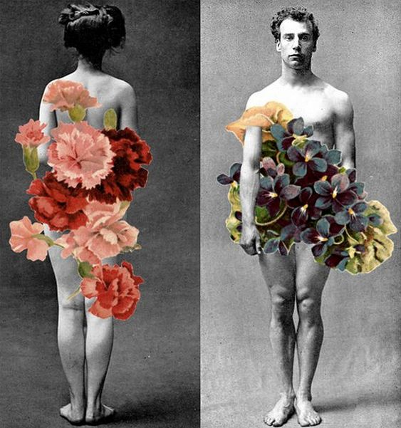 Collage, author unknown