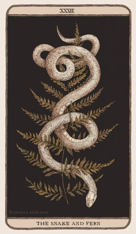 The Snake and Fern - Jessica Roux
