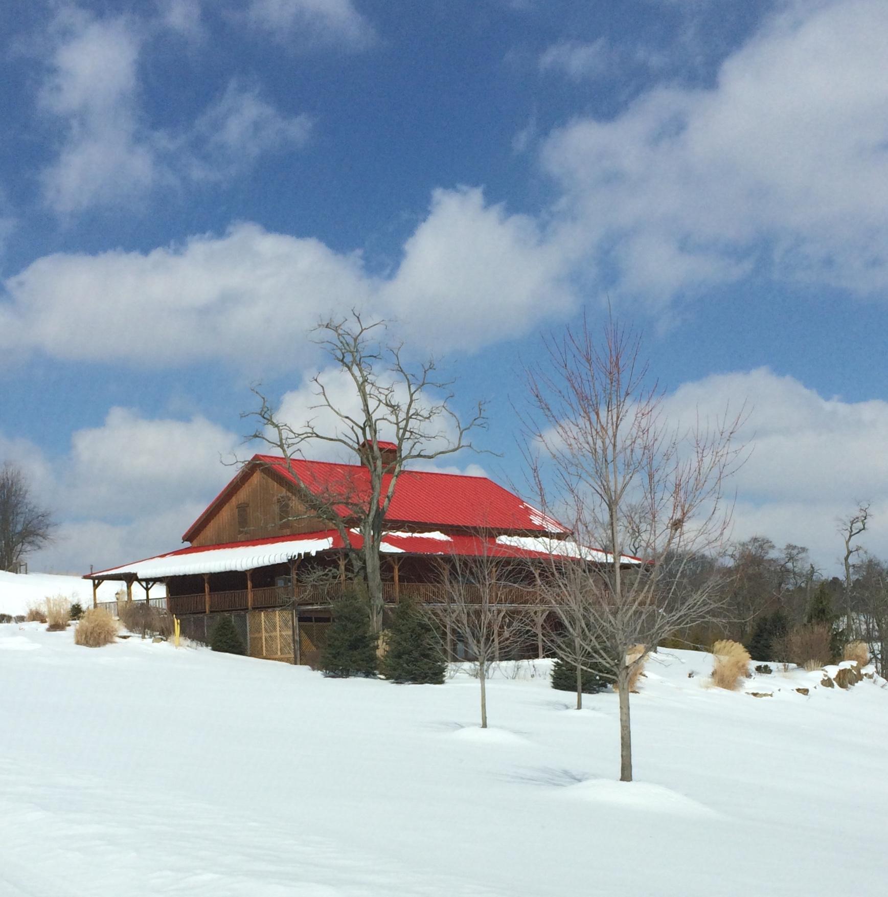 Snowy Fieldstone.jpg
