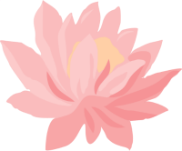 Waterlily.png