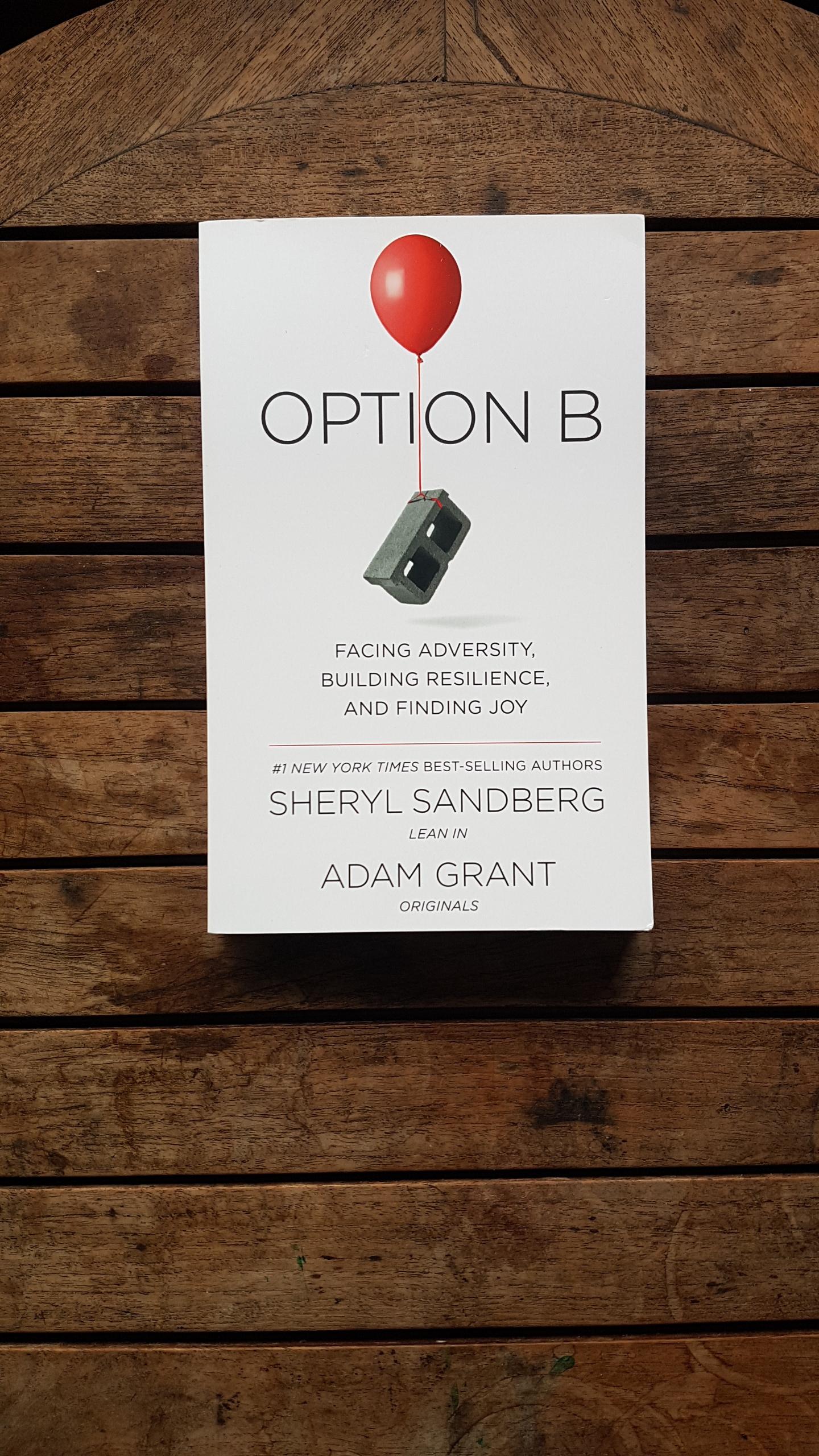 Option B: Facing Adversity, Building Resilience, and Finding Joy by Sheryl Sandberg