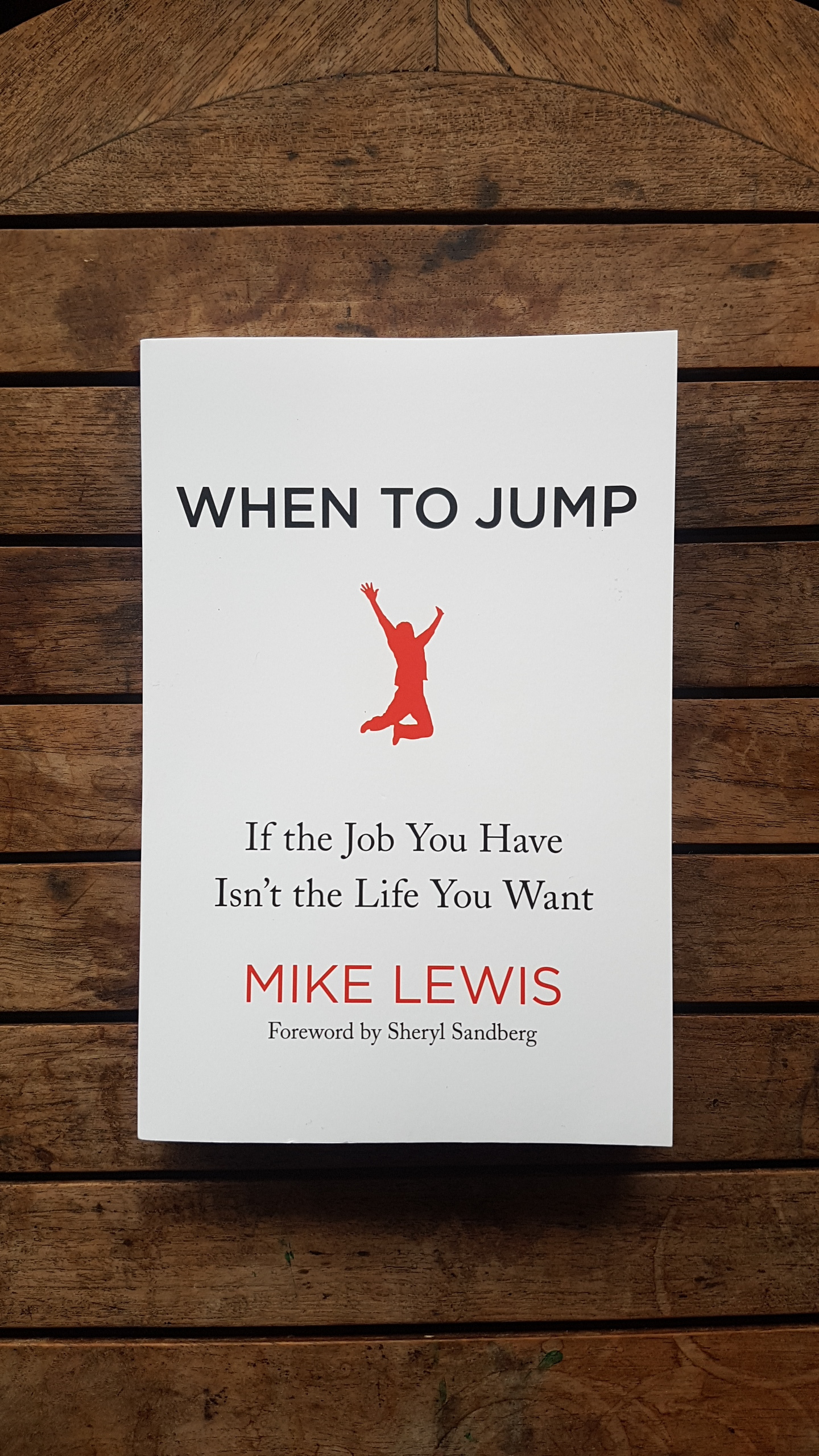 When To Jump: If the Job You Have Isn't the Life You Want  by Mike Lewis