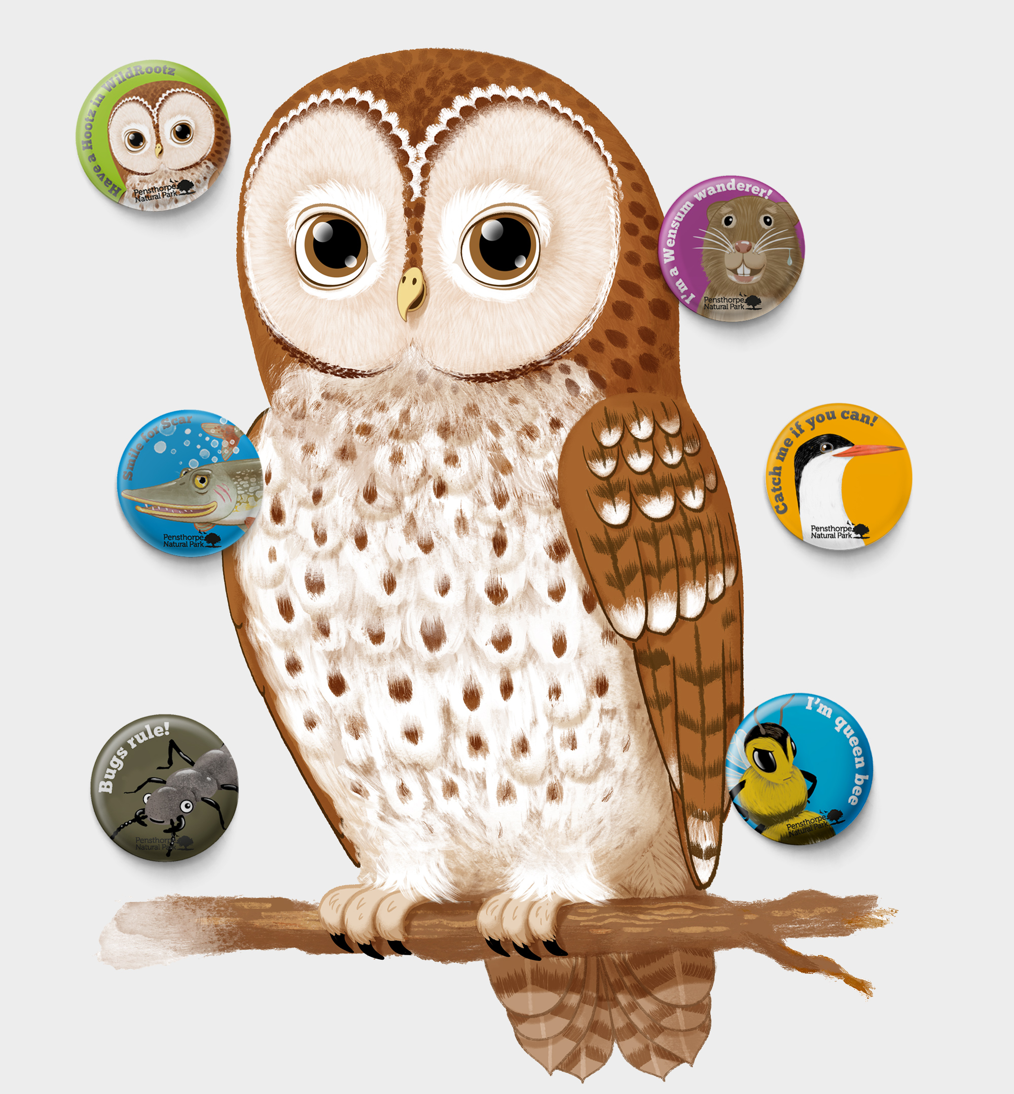 - I was asked by Pensthorpe Natural Park to design 12 characters that represented a selection of the British wildlife found at the park. The park mascot Hootz the Tawny Owl is the feature character, other characters represent the park's conservation projects, migrating, nesting and resident species.