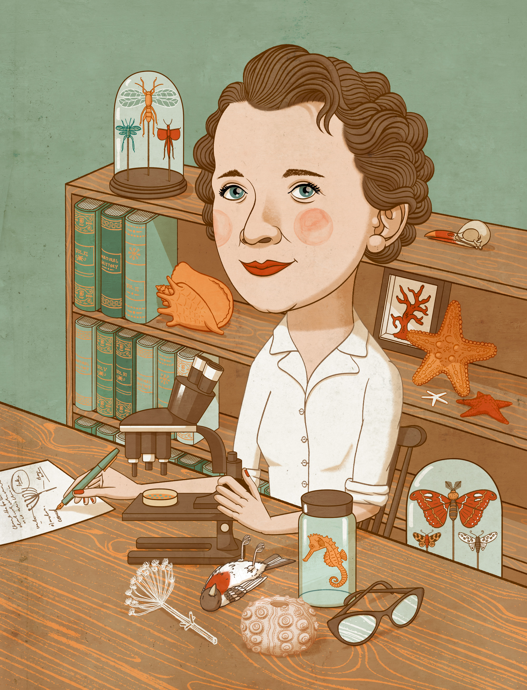 - Cover portraits for the Penguin Books series 'Women Of Our Time'. Above is naturalist Rachel Carson