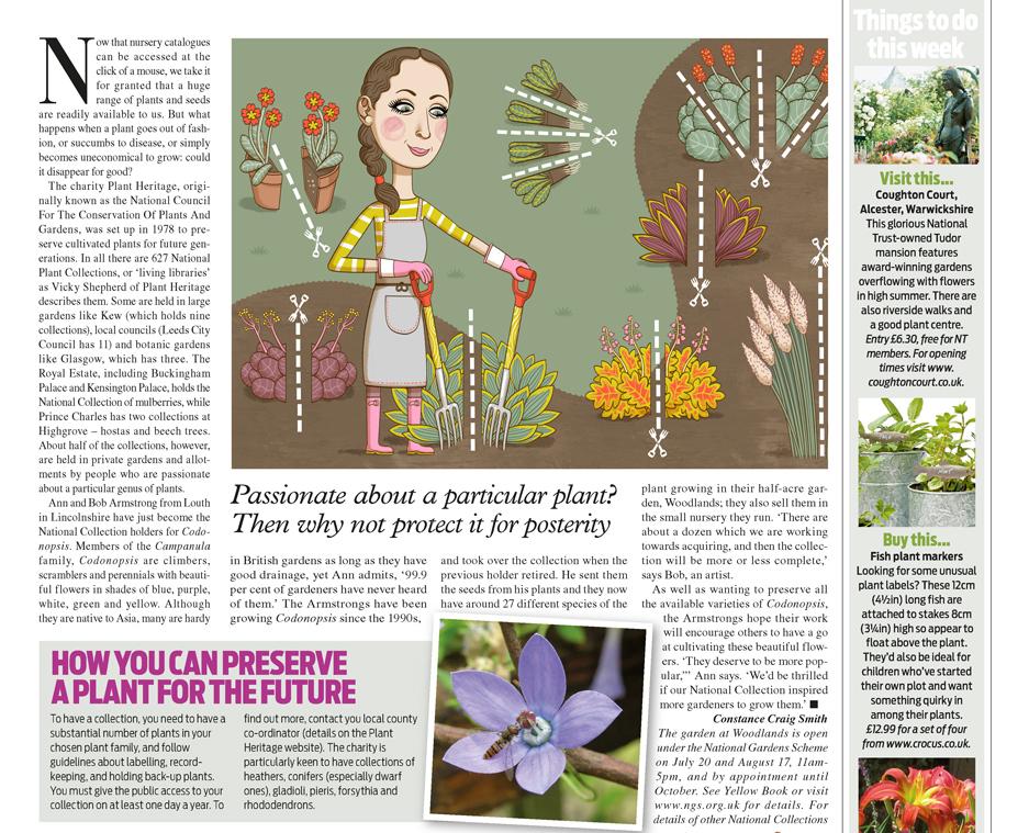 gardening illustration.jpg