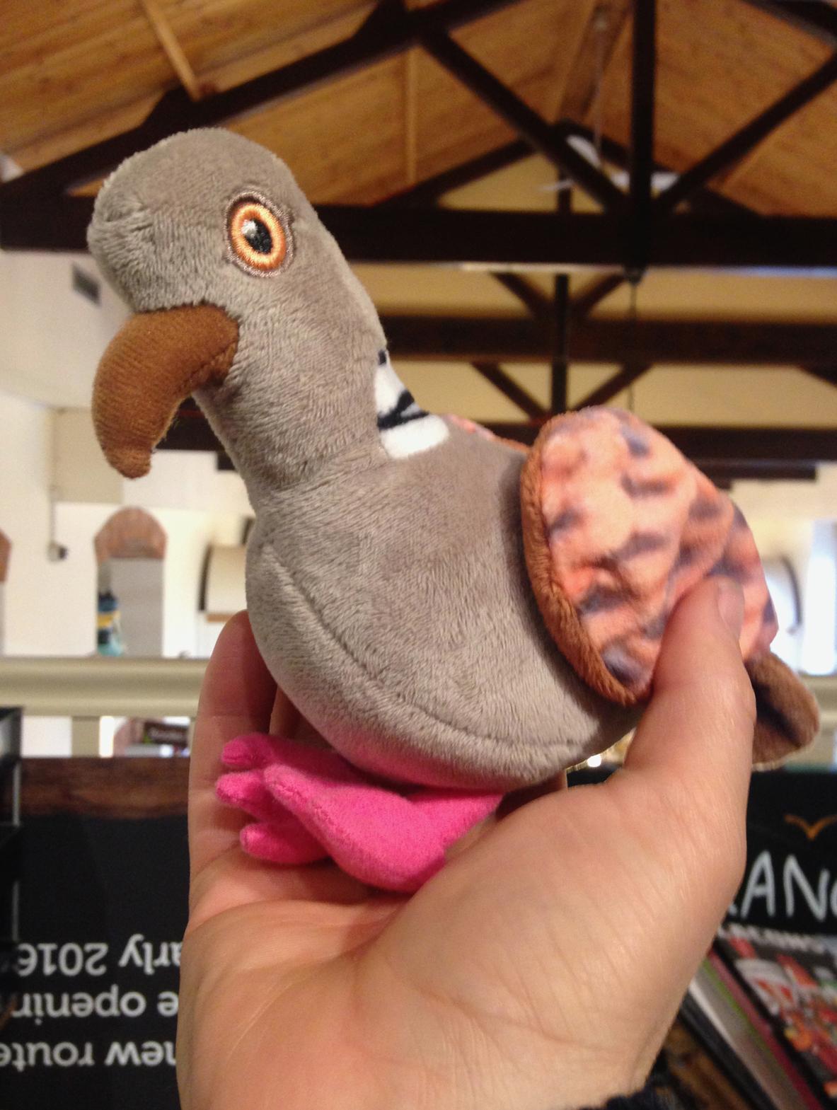 plush toy pigeon.jpg