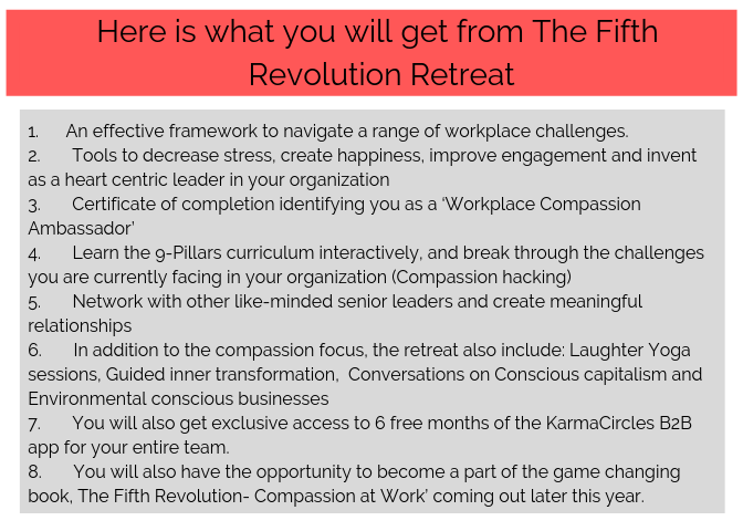 Here is what you will get from The Fifth Revolution Retreat.png