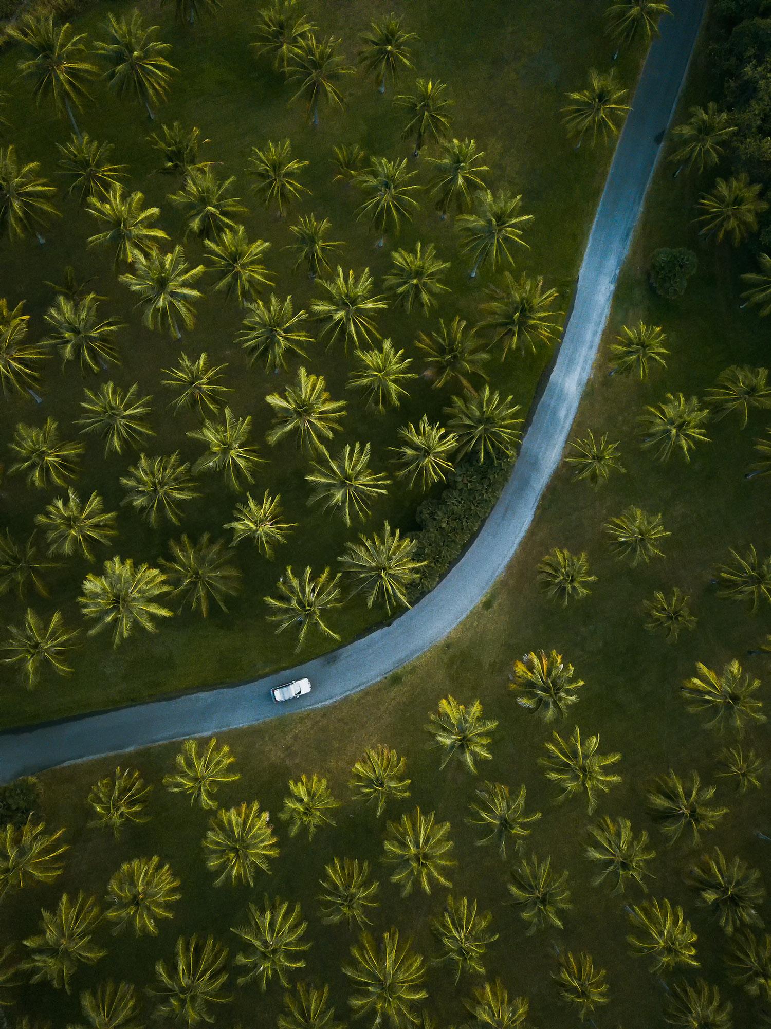 Thala Beach Aerial