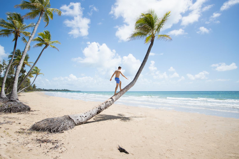 me palm tree for splish splash.jpg