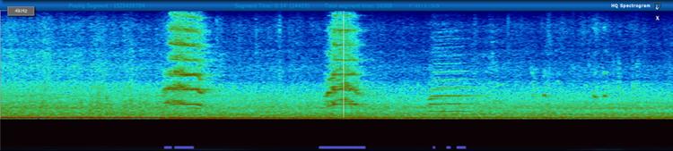 trumpet_sounds_750.png