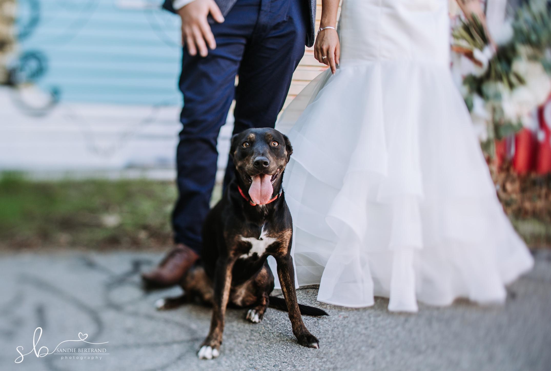 wedding--060.jpg