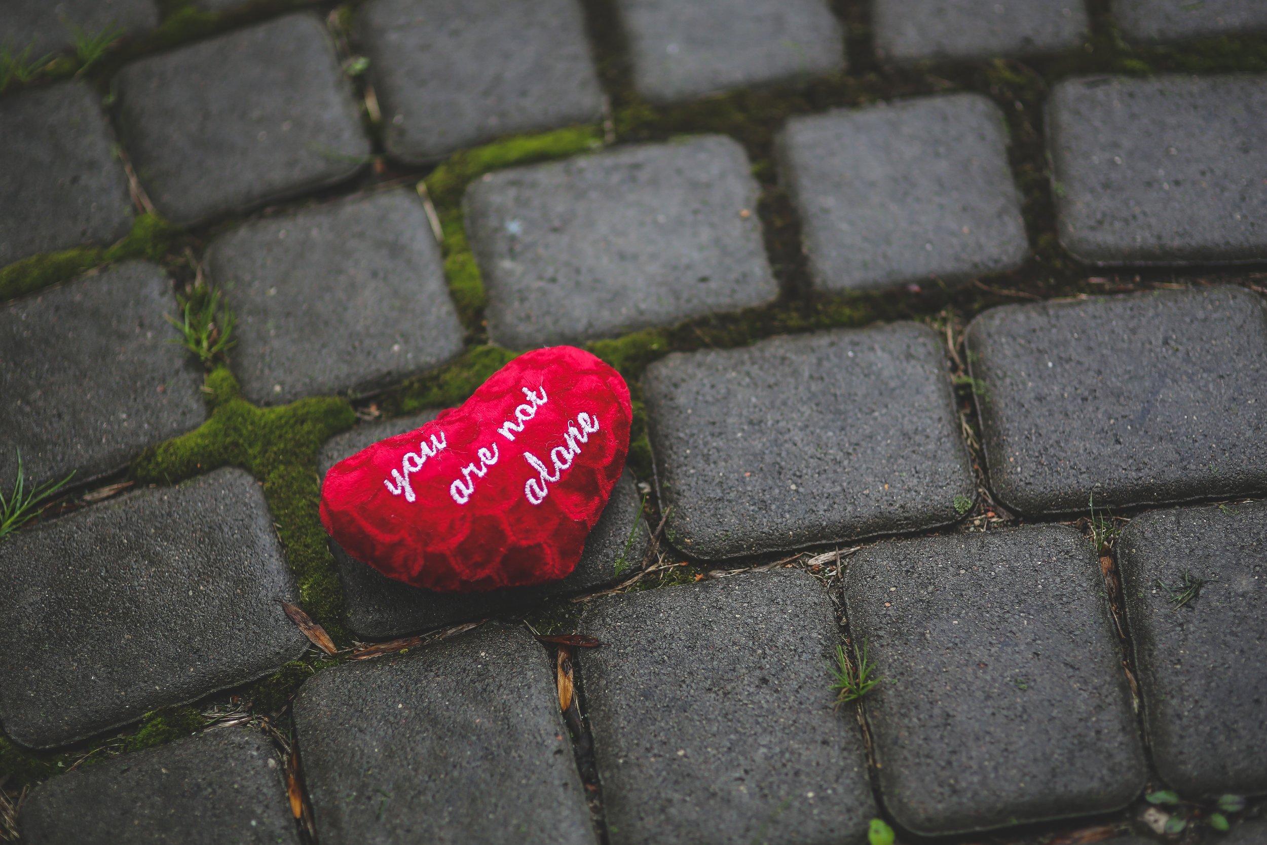 heart-moss-pavement-6068.jpg