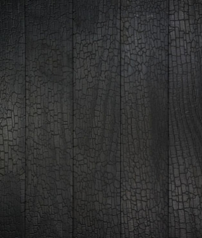 black charred timber cladding 3.jpg