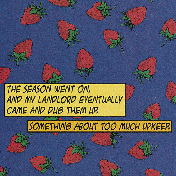 strawberry3 .jpg