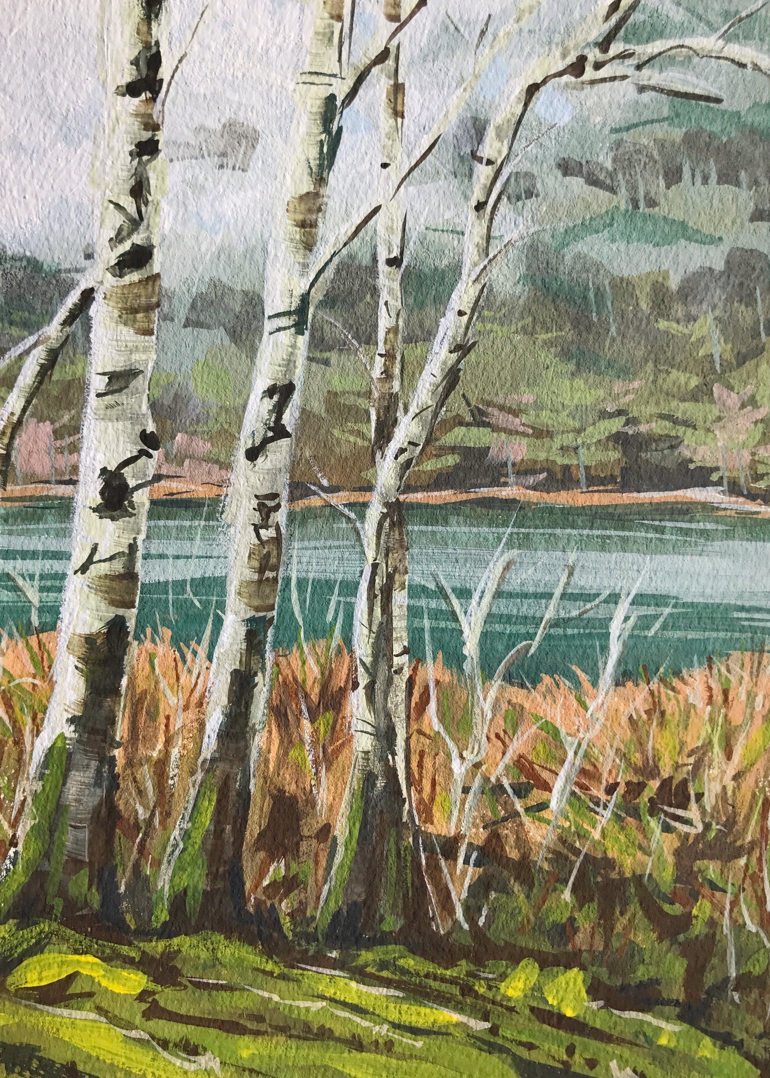 Beaver Lake WA.jpg