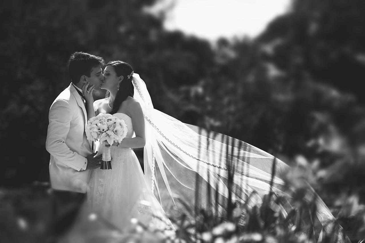 dc_wedding_396.jpg