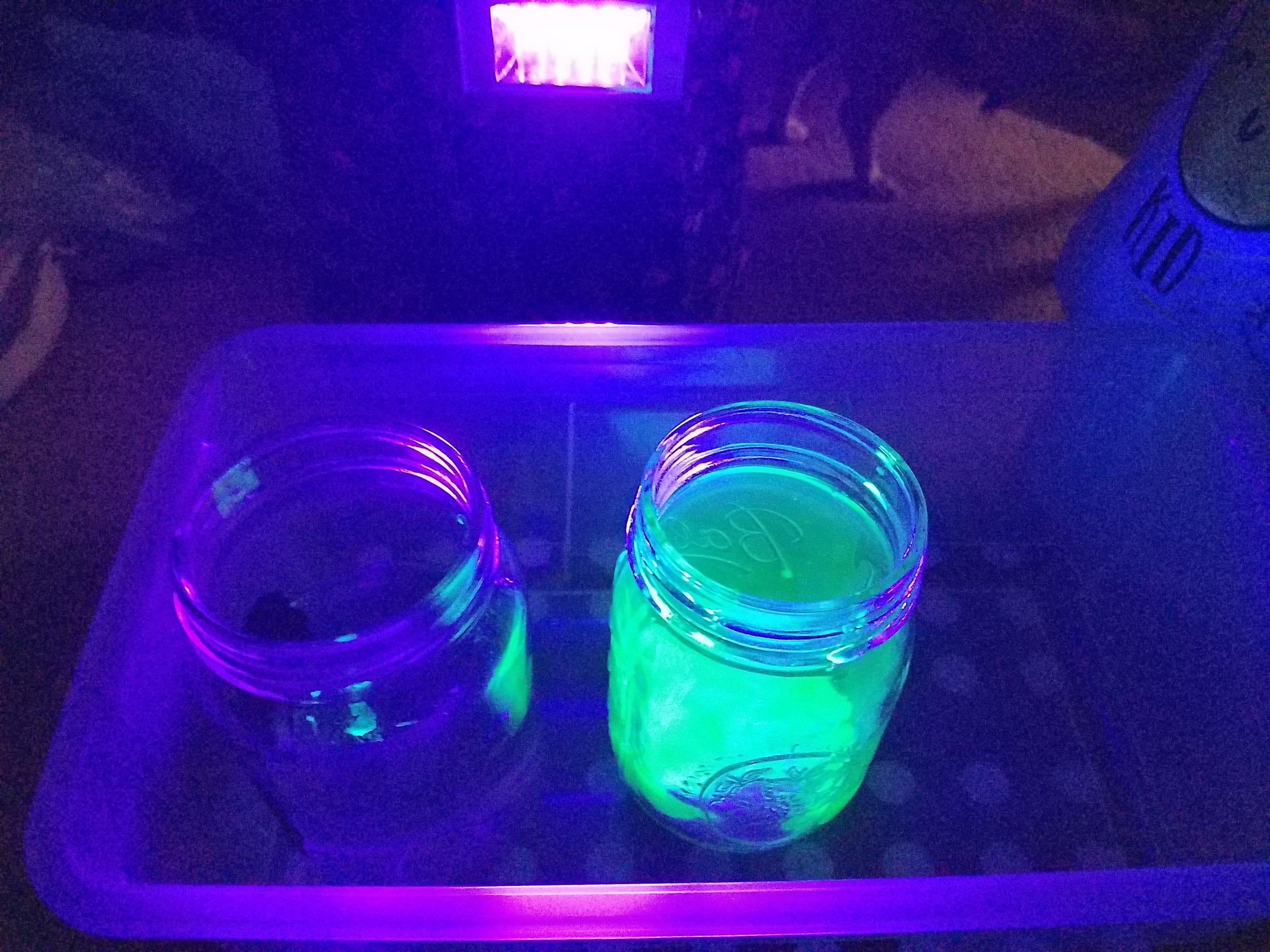 kids science activities