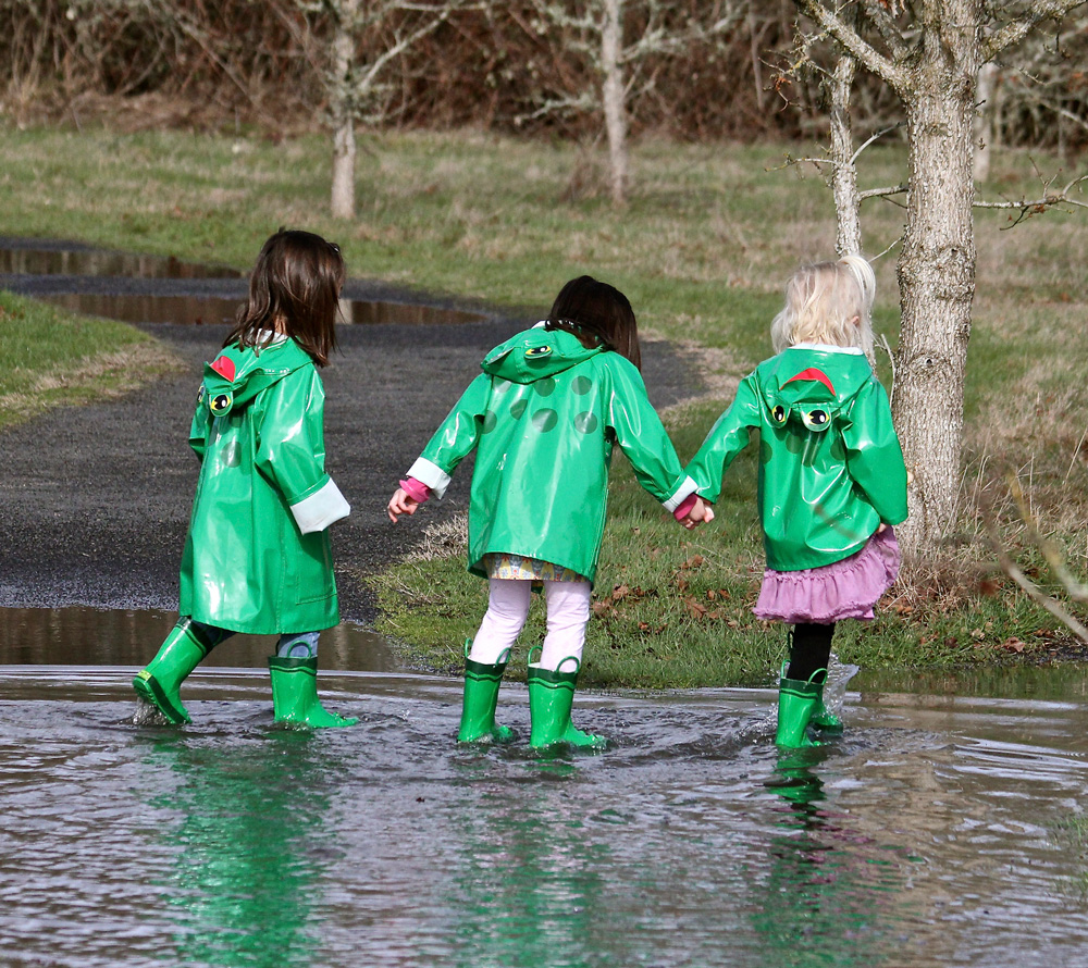 Puddle Stompers - Sherwood, OR - January through November, Twice per month: The second Wednesday and the following TuesdayYou and your preschoolers are invited to this free and educational program where you'll learn about the natural wonders of the Refuge. Volunteer Naturalists lead crafts, share stories, and guide walks on Refuge trails. The Refuge even supplies 'froggy' raingear for the kids! Each date offers a different theme, so please come more than once.Click here for full details.