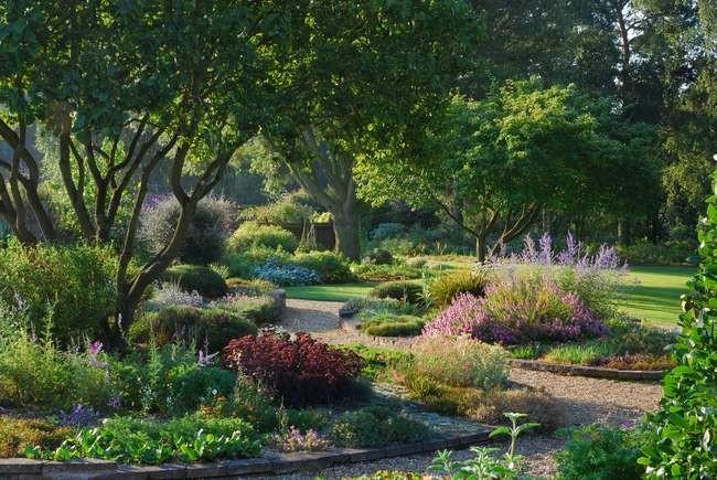 Beth Chatto Gardens, 2018