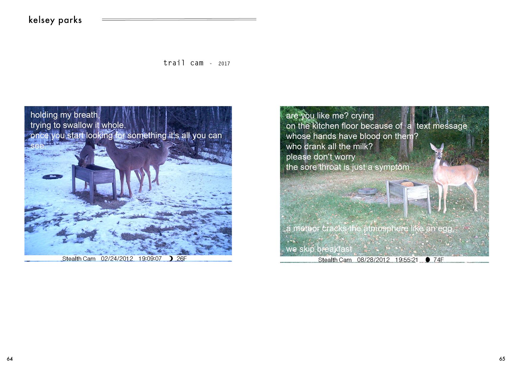 duomo-5-website36.png