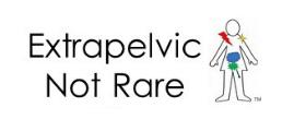 Extrapelvic Logo.png