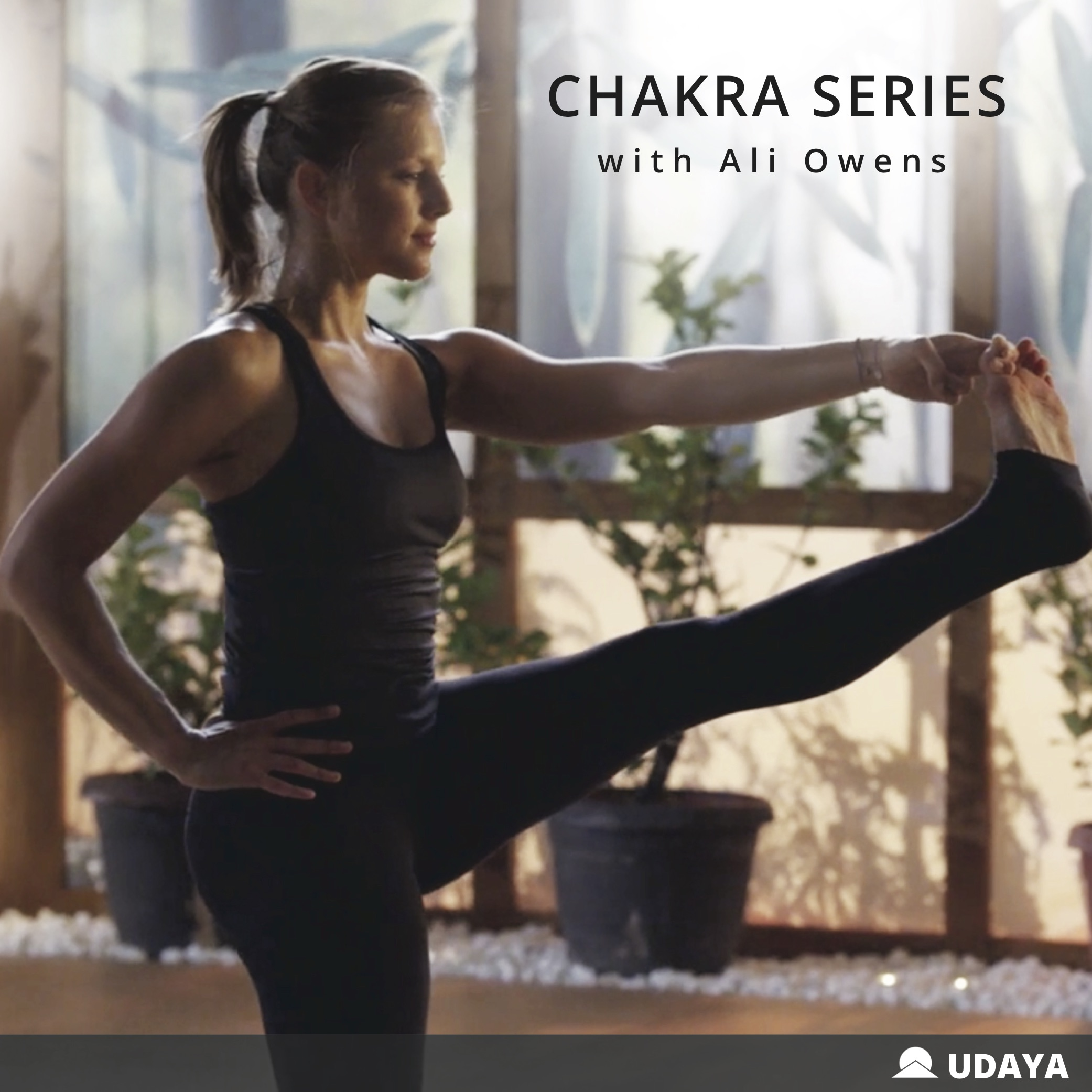 Udaya Yoga - A series of practices designed to teach you and guide you through the 7-main chakras, or wheels of energy, in your energetic body. There are 6 vinyasa based classes designed to open up and balance the first six chakras and one meditation for the 7th chakra. The series finishes with a personal practice that brings all the lessons together into one 40 minute flow.For more information visit Udaya.com and use code CHAKRASERT5 to save on your program.