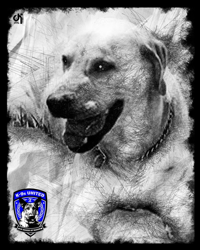 k9-zeke-muldrow-police-department_orig.jpg