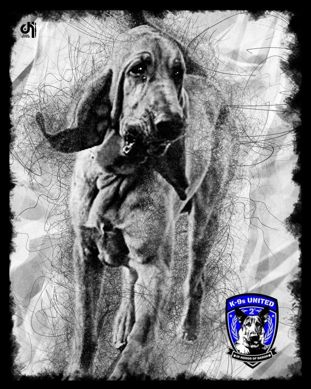 k9-jimmy-hialeah-police-fl_orig.jpg