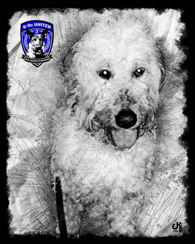 k9-bella-art-maryland-division-of-corrections_orig.jpg
